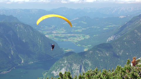Paraglider Over the Summer Valley Live Action