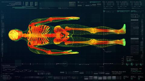 Head Up Display of Advance Human Biomedical Diagnostic Animation
