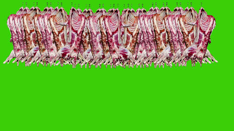 Raw Meat Hanged on a Green Screen Background Footage