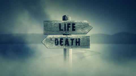 Old Wooden Sign on a Middle of a Cross Road With the Words Life or Death Footage