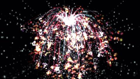 Digital Animation of Fireworks Animation