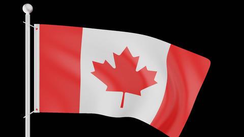 FLAG OF CANADA WAVE W/ALPHA CHANNEL Animation