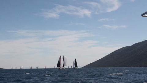 Sailing Boats On The Ocean With Birds Flying And Wind Blowing Water Waves Live Action