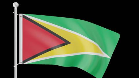 FLAG OF GUYANA WAVE W/ALPHA CHANNEL Animation