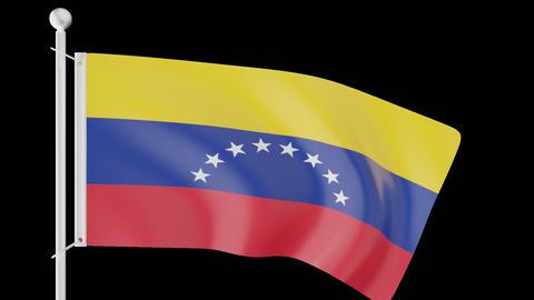 FLAG OF VENEZUELA WAVE W/ALPHA CHANNEL Animation