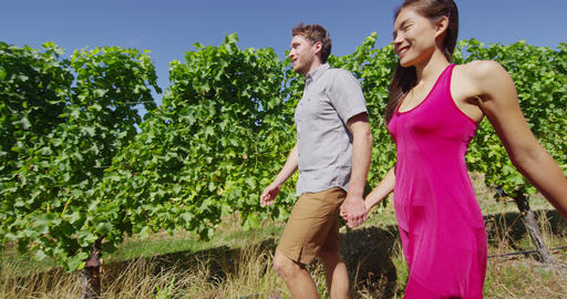 Vineyard - romantic couple holding hands walking by grapevines on wine tour Live Action