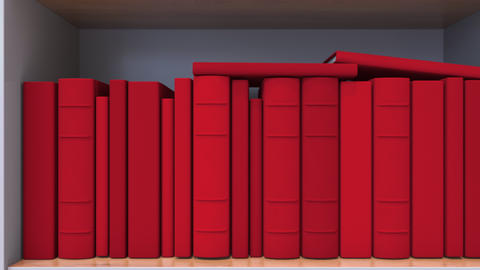 Many spines of the books form the German flag. Literature, culture or science in Live Action