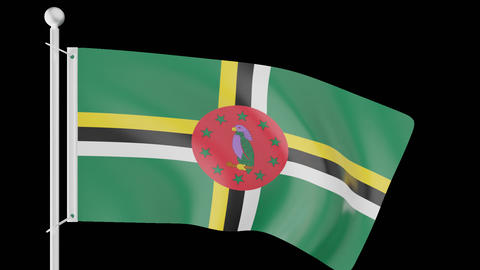 Waving Flags Of The Caribbean Part 1 0