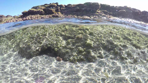 Spit underwater view of Sardinia crystal clear sea and rocks Live Action
