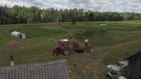 Russia / Tver - June 20 2019: Three white rural men unload tractor stack up haystack Live Action