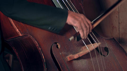 4K Bassist Playing / Contrabass Player / Orchestra Musician Footage