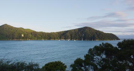 Abel Tasman National Park New Zealand Travel Vacation Beach Destination Live Action