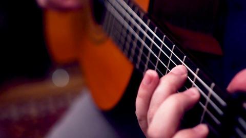 Session Musician 0