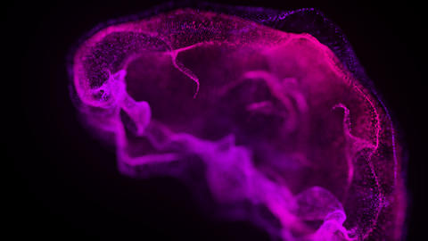Computer generated movement of color particles of fluid on a black background Live Action