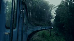 Train crossing dark fantasy foggy forest mystery landscape Footage
