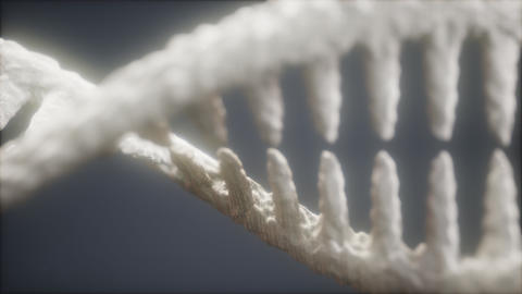 DNA molecule on the grey background Live Action