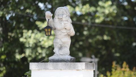 Happy Gnome Statue In A Garden Footage