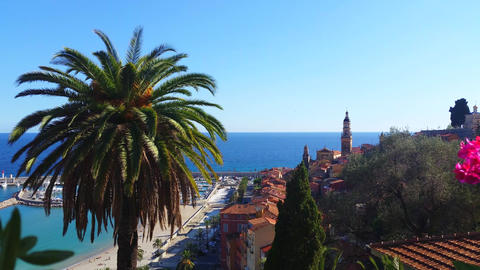 Beautiful View of the Old Town of Menton and a Palm Tree Footage