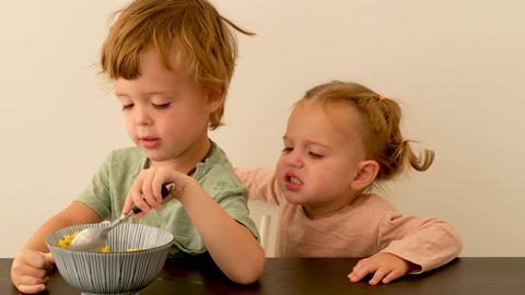 Little boy communicating with capricious sister during breakfast Live Action