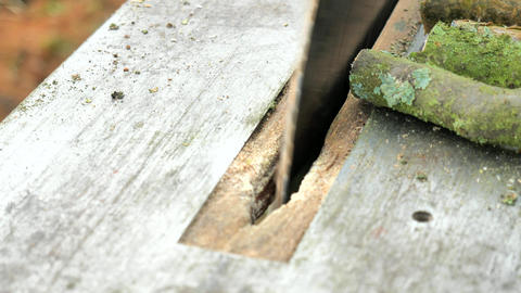 Wood & Work 1