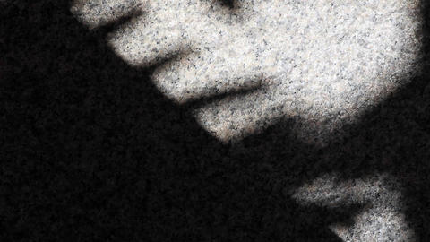 Abstract tree leaf shadows reflected on granite floor wall 실사 촬영