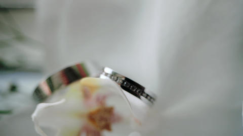 Close-up shot of a pair of wedding rings for the couple in love. Wedding rings Live Action