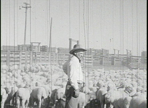 Men and women work at a ranch in the 1920's Stock Video Footage