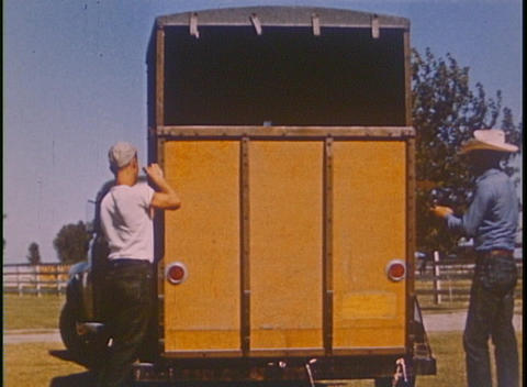 A horse is led to a trailer and driven away in this 1940-1950 home movie Footage