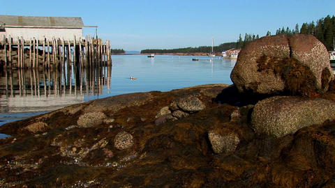 At a lobster village in Stonington, Maine a building is over water as seen from a rocky shore Footage