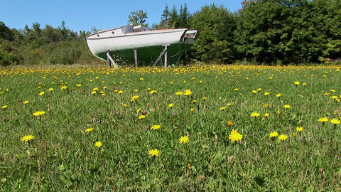 An old boat in Main, New England rests on wooden planks... Stock Video Footage