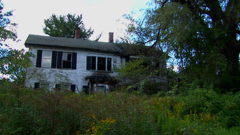 An old abandoned house overgrown with trees and brush Footage