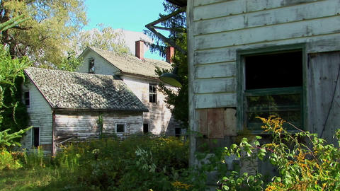 An old abandoned house overgrown with trees and brush Live Action
