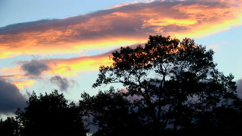 A time lapse of multi-colored clouds above the silhouette of trees in Rural Maine Live Action