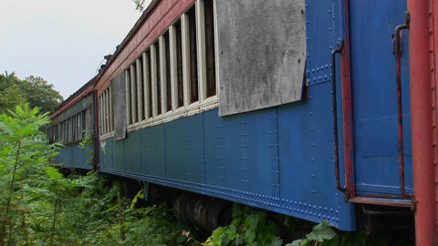 Abandoned railroad cars surrounded by brush Stock Video Footage
