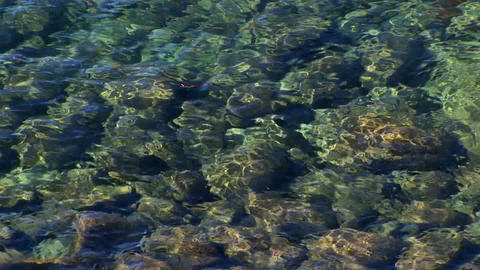 Ripples of water in Lake Tahoe distort the view of rocks... Stock Video Footage