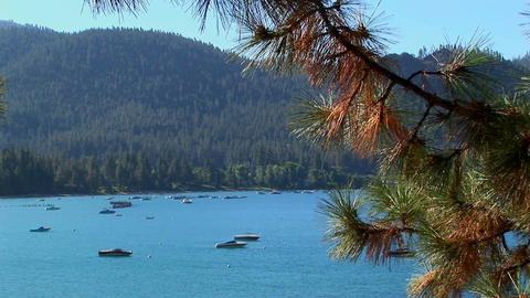 Boats float on water in Lake Tahoe surrounded by tree-covered hills in the Sierra Nevada mountains Footage