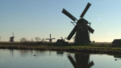Windmills line a canal in Holland as ducks float by Stock Video Footage