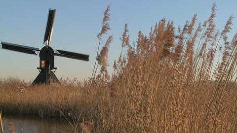 A windmill spins near high grasses in Holland Stock Video Footage