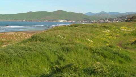 A wide shot of the Central California coast near Morro Bay Stock Video Footage