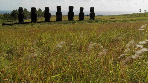 Grass blows in front of the Easter Island statues Stock Video Footage