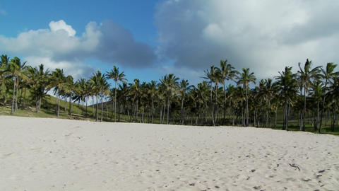 Pan across a nearly perfect white sand beach with tropical palms in the distance Footage