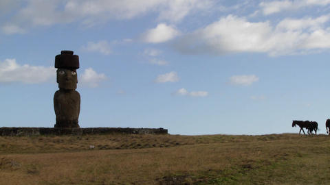 Horses wander near one of Easter Island's amazing statues Stock Video Footage