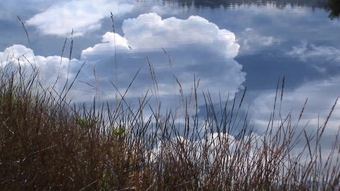 A remarkable shot of thunderclouds billowing over a calm pond Footage