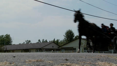 A low angle of an Amish horse and buggy cart moving along a rural road Footage