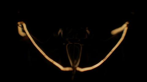 Shimmering light bulb extreme close up, spiral vibrating inside Footage
