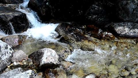 Flowing stream Footage