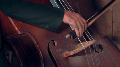 1080p Bassist Playing / Contrabass Player / Orchestra Musician Footage