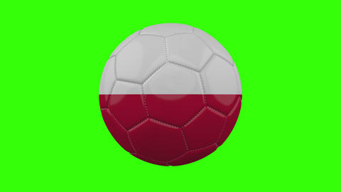 Euro Flags On Soccer Balls 2