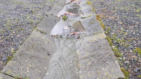 Concrete drainage bring water from rain to channel holes. Channel or gutter, shallow stream. Dirty Live Action