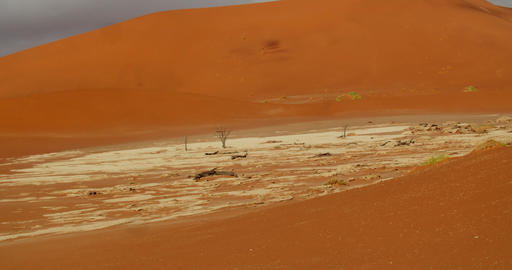 Bright orange sand with a small area of white sand in Namib desert, 4k Live Action